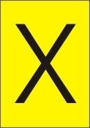 Xavier Naidoo - nicht von dieser (DVD)