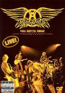 Aerosmith - You Gotta Move (DVD)