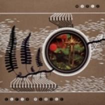 Elfin Saddle - Wurld (DVD)